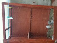 Bird avairy coop