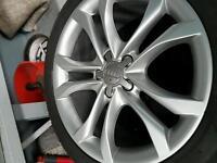 Audi allow wheel