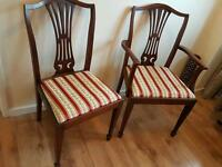 Two dinning chairs in good condition