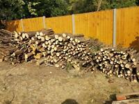 Free wood, logs, fire wood, timber