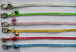 Small-Leather-Cat-Kitten-Collar-Bell-Pick-Your-Colour-Glitter-Design-NEW