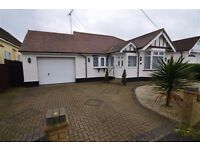 Beautiful bungalow to rent in Pitsea / Basildon / Essex