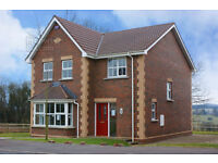 DETACHED FOUR-bedroom high quality red-brick residence FIVEMILETOWN, CO. Tyrone, Northern Ireland