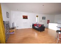 modern spacious 1 bedroom apartment comprising of a very large reception room, Modern Kitchen