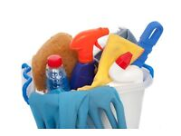 Domestic Cleaner available in Dunfermline