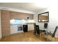 Ground floor duplex flat, two bedrooms, secure parking, 24hr porter, Greenwich Millennium Village