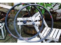 Bontrager Race XXX Lite Road Racing Carbon Clincher Wheelset 700c 1340gram Zipp Mavic Reynolds