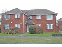 1 bedroom flat in Rose Street, Wolverhampton, WV14 (1 bed)