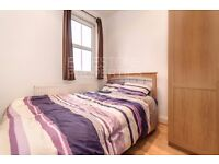 Large [STUDIO] with Separate Kitchen. Excellent Condition. New Cross Rd. SE14.