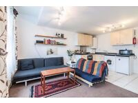 AMAZING, MODERN 1 BED FLAT IN A VICTORIAN FLAT, VERY SPACIOUS, BRIGHT, HACKNEY/DALSTON!