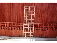 Square Trellis 180cmx60cm