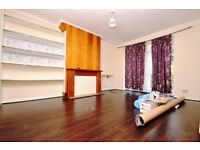 Lovely 2 bedroom flat in Manor House Station