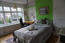 Spacious Double Room for one Person - reduced price, great bargain!