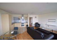 Luxurious 2 bed & 2 bath modern apartment! Gym & Sauna! River side views! Concierge! New Build!