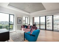 Extremely spacious 2 bed 2bath apartment - river views & gym & pool & sauna - City Island E14 E16