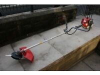 Petrol strimmer/brushcutter with polycut head