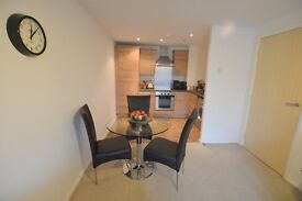 1 BEDROOM APARTMENT AVAILABLE FROM 24/2/17 ON GATESHEAD QUAYSIDE - £550pcm FURNISHED