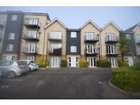 Spacious 2 bed appartment in Ilford on Blackthorn Road