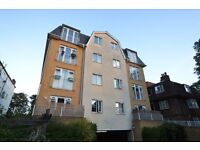 GREAT VALUE NICE SPEC 2 double bedroom apartment seconds from crystal palace park! be quick to view!