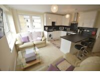 HMO: Newly refurbished, 5 bedroom, HMO property close to Elm Row available September