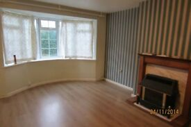 Three bed room house to let