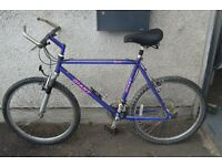 Mens Large Frame Giant Explorer Bike - Local Delivery Available