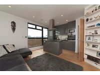 ***GORGEOUS TWO BEDROOM APARTMENT IN HOLLOWAY! MUST BE SEEN***