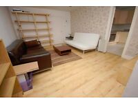 Bright 1 bedroom basement flat on St Patrick Square available May - NO FEES!