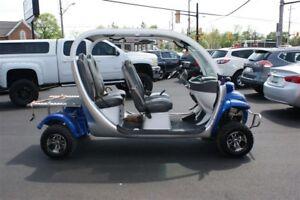 2002 GEM E825 Golf Cart -
