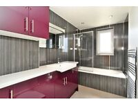 Very big 2 bedroom flat with new kitchen and bathroom for sale