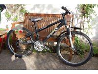 Raleigh Raptor Jump 24 Boys Mountain Bike