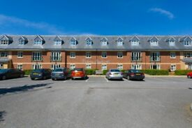 2 BEDROOM APARTMENT TO RENT FACING ALBERT PARK, MIDDLESBROUGH. 55'S AND OVER!