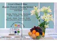 Lizzie's Clean & Shine Bespoke Cleaning Service