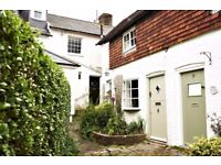 "Mill Cottage is a stunning property located on a Sussex ""Twitten"" within the heart of the Steyning"