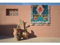 Vintage Moroccan Boucherouite