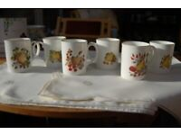Kingsbury Six Matching Mugs in Fine Bone China, Autumn Fruits Design, Superb Condition, As New