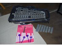 xylophone and mapex case