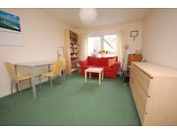 Fantastic 1 bedroom flat with separate lounge/kitchen in Holyrood available September - NO FEES!