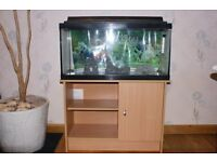 Aquarium with cabinet and some accesories