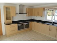 Fitted kitchen with electrical appliances
