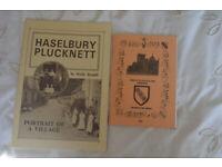 Haselbury Plucknet and Mappowder Church