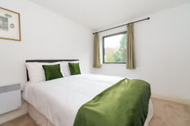 Double Room to Rent in Pimlico, Central London,gt3 **SUMMER SPECIAL OFFER! DON'T MISS IT!**
