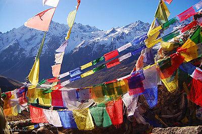Tibetan Buddhist Prayer Flags -Wind Horse 14cm x 17cm (25 flags)-5M Total Length