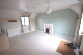 Privacy, clean, new, detached ONE BEDROOM home to rent