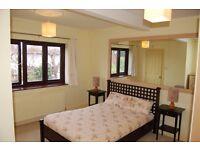 Lovely en-suite double room in Pen Hill
