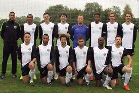 Join Football Team: Players wanted: 11 aside football. South West London Football Team. Ref: 64r