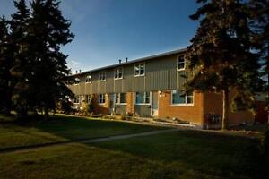 Griesbach Community - Live in Rent Free for the Holidays Edmonton Edmonton Area image 8