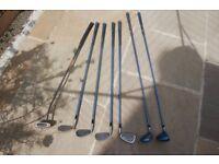 Women's Mizuno Widec half set golf clubs and bag, graphite shaft