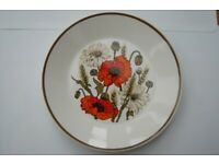 J.G.Meakin Poppy Design 3 Dinner Plates, 1 Salad Plate, 1 Serving Plate, All in Excellent Condition