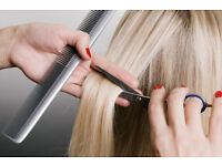 Mobile Hairdressing Business for Sale in Suffolk. Turnover £5,000. More than 20 regular clients.